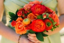 Orange and Green Wedding Ideas / Orange and Green Wedding Ideas for orange and green themed weddings and parties!