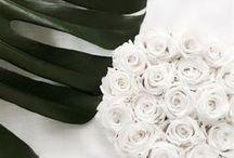 Infinity Flowerbox mit Herz / Uns liegt der soziale Aspekt sehr am Herzen. Wir wollen mit Infinity Rosen Menschenleben ändern. Unterstütze uns.