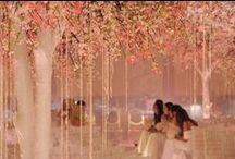 Platinum Weddings / Dream weddings, that really happened!