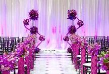 Pantone Acai Wedding Inspiration / All about Acai