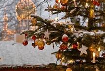 Merry Freakin' Christmas. / by Carla Hayes