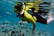 Water Sport / water sport aktivity