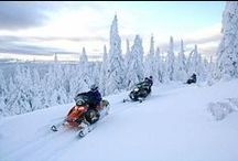 Snowmobiling Dreams / by American Family Insurance