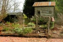 Gardens and Garden Sheds / by Tyne Armor