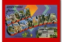 South Carolina / These are just pins that remind me of this state..You see something & think....South Carolina!