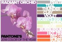 RADIANT ORCHID / Pantone's 2014 Color of the Year! This calm, elegant color works great with neutrals, pastels and even bright pinks and oranges. / by PANYL