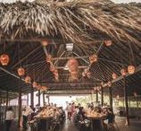 Tulum Weddings / Destination Wedding Planner