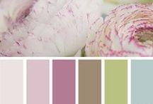 colors / by Lindy Vint