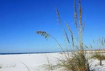 """The """"World's Most Beautiful Beaches"""" - Panama City Beach / The best beach vacation - period. Panama City Beach offers every kind of fun imaginable, so you can surround yourself with emerald waters, white sand beaches, temperate weather and have the time of your life!"""