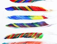 feathers.art