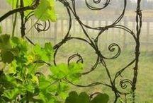 Plant trellis | Сад. Опоры