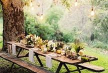 Groovy Garden / I love gardens! Nature, colors, fragrances: my own personal oasis!