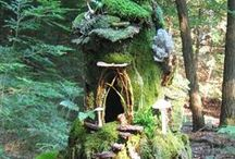 Fairy Homes and Gardens / by Anne McCarthy