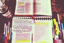Journey: Study