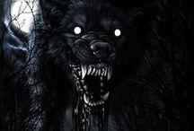Wolfes & Werewolfes