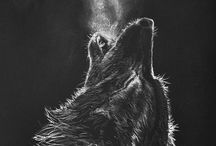 [ wolves ]