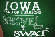 Iowa / by Lou Ann Brown