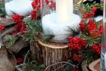 Nature & Christmas