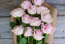 hana / (flowers) / by ashleyvette acosta