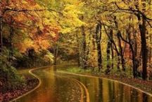 Autumn / by Kristi Jacobs-Guth