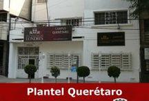 CAMPUS QUERÉTARO / Campus exclusivo para la Licenciatura en Derecho