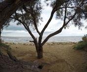 Localizaciones: agua / Localizaciones especiales donde el agua es el gran protagonista.