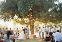 Nuptials / Wedding Ideas / by Erin Warford