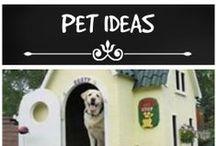 Pet ideas
