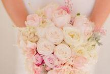 Wedding Flowers for Abby and Drew  / by DeAnn Blackard