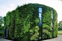 Vertical Gardens / by Inhabitat