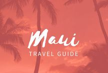 Maui Travel Guide / When visiting Maui, we take the guess work out of the equation. One of the cheapest Maui activities is snorkeling. A helicopter ride over Maui is the best way to explore the hidden beauty of Maui. Bike Down the Volcano. Other ideas: Visit a Working Pineapple Plantation. Maui Zipline. Ocean Rafting. Scuba Diving. Bottom Fishing.