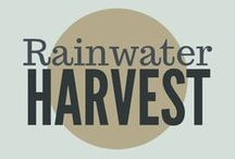 Rainwater Harvesting / How to harvest and store rainwater in your yard and on your property. Rainwater containers, DIY rainwater collection, rainwater collection tanks.
