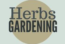 Gardening || Herbs / how to grow herbs, herbs in containers, how to use herbs