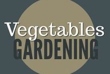 Gardening || Vegetables / Grow vegetables for food storage and fresh eating