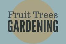 Gardening || Fruit Trees / Growing fruit trees, espalier fruit trees, grafting, tree guilds, pruning trees, home orchard