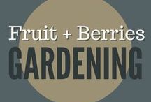 Gardening || Berries + Grapes / grow berry bushes, blueberries, grape pruning, strawberries, raspberries, cane fruit