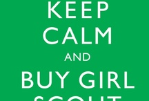 Ideas to do with Girl Scout Troop / Juniors/Cadettes/Seniors/Service Unit Registrar / by Wendy Bittel
