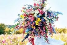 Flowers + Plants / Gorgeous ideas for bouquets, centerpieces, and more.