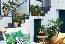 Gardens & green / Gardens & green board: All about gardening at home, garden home ideas, decore inspiration & more.