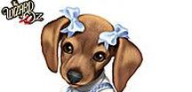Holiday Dog Gifts and Information / This Pinterest board is about gifts and information regarding dogs. So if you are a dog lover or dog owner browse our pins for some great dog gift ideas.    Collaborators please only pin dog related items and no multiple pinning (same pin back to back) If you know someone who loves dogs invite them to this board...Thanks