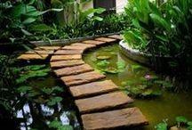 garden & diy / by alice