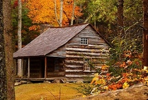 Tennessee Im gonna live here one day