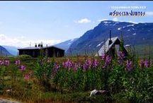 Naturaleza // Nature / Rincones naturales del mundo. Sitios de belleza natural. Beautiful nature spots all over the world.