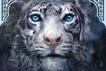 Favorite Book: Tiger's Curse / Tiger's Curse [#1 of the Tiger Series] by Colleen Houck / by Rosemary Coley