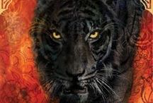 Favorite Book: Tiger's Quest / Tiger's Quest [#2 of the Tiger Series] by Colleen Houck / by Rosemary Coley