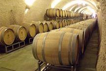 Wine Tasting / Wine Tasting