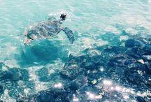 Praias/mar