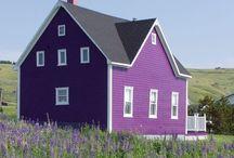 love'n purple / by Julie Fowler Conroy