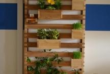 Garden ideas... / by McKenzie Craig