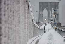 winter wonderland / by Julie Fowler Conroy